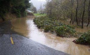 floodedroadElkR